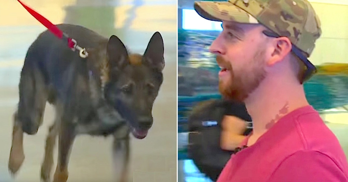 http://littlethings.com/ikar-military-dog-reunion/?utm_source=hunnam&utm_medium=Facebook&utm_campaign=dog